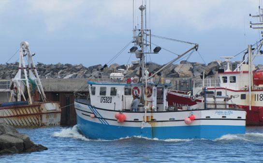 bateau de peche rimouski
